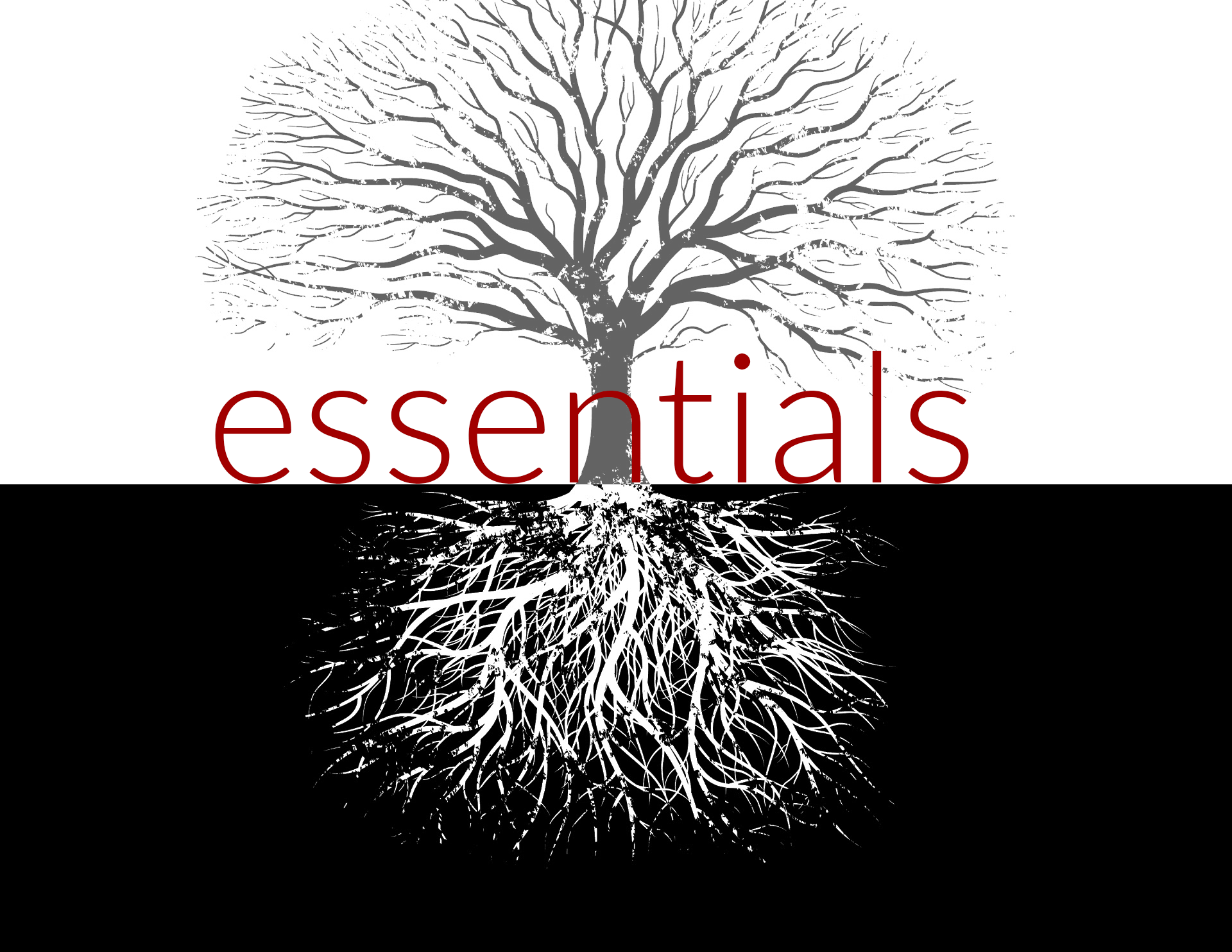 View all sermons in Essentials